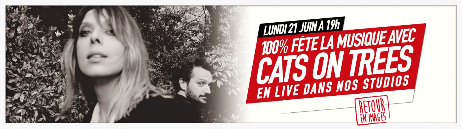 CATS ON TREES sur 100%